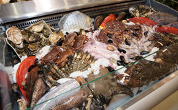 Great variety of fish and seafood Stock Images