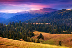 Great view of Carpathian mountains at sunset time Royalty Free Stock Photo