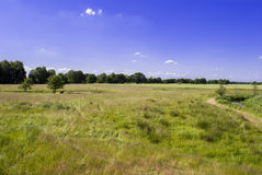Great View. Rural spot - bright day - clear sky Royalty Free Stock Photo