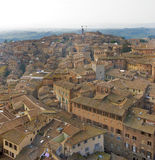 A great view of Siena Royalty Free Stock Photo