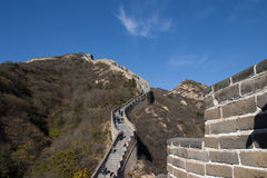 Great Wall. In beijing of china Royalty Free Stock Photo
