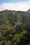 The great wall. Of china, mutianyu section Royalty Free Stock Photo