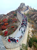 Great Wall in the Autumn Stock Images