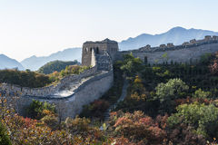 Great Wall in autumn Royalty Free Stock Photography