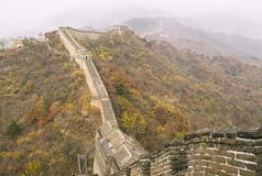 Great Wall during Autumn Season Stock Images