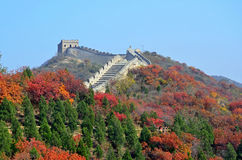 Great Wall Royalty Free Stock Photo