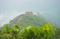 The great wall of China. Looking at the area where it has mostly been repaired. In the foreground is a large amount of vegetation. Image taken from the tree Royalty Free Stock Photos