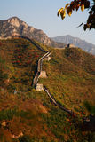 Great wall china royalty free stock photos