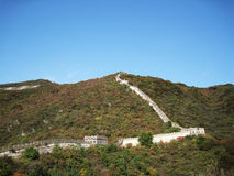 Great Wall of China in autumn Stock Images