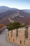Great Wall of China. The Great Wall of China outside Beijing Royalty Free Stock Photo
