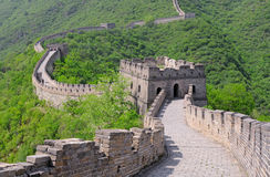 Great Wall of China in Summer Stock Image
