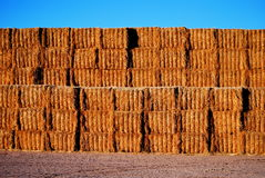 Great wall of hay Royalty Free Stock Photo