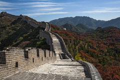 Great Wall on mountain Royalty Free Stock Image