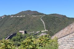 The Great Wall at Mutianyu Royalty Free Stock Photo