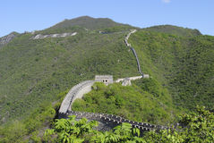 The Great Wall in summer Royalty Free Stock Photography