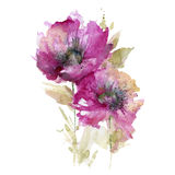 Great watercolor flowers Stock Photography
