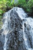 A great waterfall seen in the countryside in Japan, portrait style royalty free stock photo