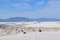 Amazing White Sands Desert in New Mexico, USA. Great wave-like dunes of gypsum sand have created the world's largest gypsum dunefield stock images