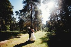 Great wedding couple dancing in the forest. Sun shining bright and rays of the sun dissipate through the trees Stock Photos