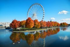 Great wheel of Montreal during fall season. Great wheel of Montreal with his panoramic view 60 of meters high, and a breathtaking view of the river, Old Montreal stock image