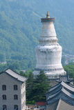 Great White Pagoda Stock Images