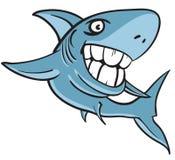Great white shark with big human teeth. Cartoon illustration of a great white shark with big white human teeth Royalty Free Stock Photos