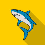 Great white shark icon in flate style isolated on white background. Surfing symbol stock vector illustration. Royalty Free Stock Photo