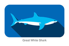 Great white shark swimming flat 3D icon design. Vector illustration Royalty Free Stock Photography