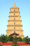 Great Wild Goose Pagoda Royalty Free Stock Images