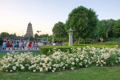 Great Wild Goose Pagoda Park Stock Photo
