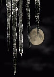Greater icicles. Royalty Free Stock Photography