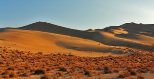 The greater sandy dune Eureka on sunrise Royalty Free Stock Image