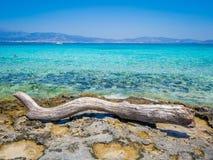 Grecja, Crete: Złota plaża w Chrysi wyspie, jeden bezludzie i gorgeus plaża w świacie, fotografia royalty free