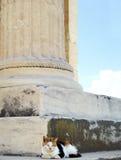 Grecja, kot ma sjestę obok antykwarskiej kolumny Obrazy Stock