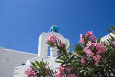 Grecja wyspa Anty Paros Kwiaty i stary kościół obraz stock
