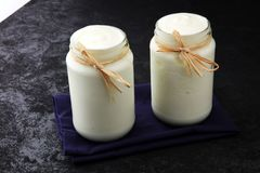 Grecki jogurt w szklanym słoju naturalny śmietankowy jogurt Fotografia Stock