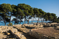 Greco rzymskie ruiny Emporda, drzewa i morze, Fotografia Stock
