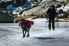 Gredos, Espanha 12-January-2019 Cão de guia e seu proprietário do alpinista que andam acima do lago do gelo fotografia de stock royalty free