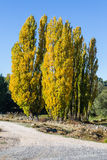 Gredos Mountain in Spain Stock Images