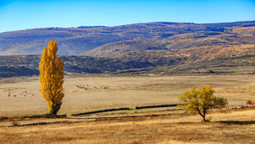 Gredos Mountain in Spain Royalty Free Stock Photography
