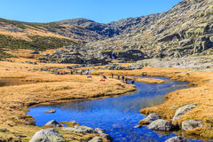 Gredos Mountain in Spain Stock Photography