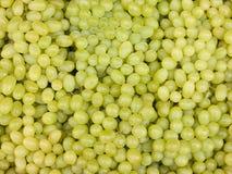 gree виноградины Стоковое фото RF