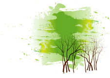 Gree forest  background ,Vector illustration Royalty Free Stock Photo