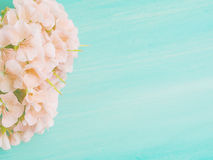 Gree pastel floral card Royalty Free Stock Images
