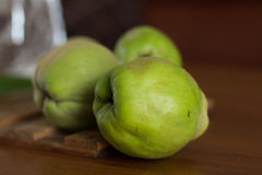 The gree quince, italy, apulia Stock Photography
