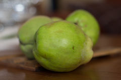 The gree quince, italy, apulia Royalty Free Stock Image