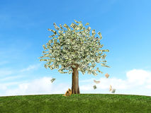 Gree Tree with full of Money Stock Photography