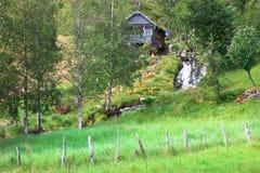 Gree Wiejska scena w Norwegia i bujny zdjęcia royalty free