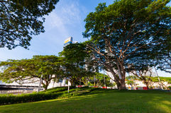 Greea teren w mieście Zdjęcia Royalty Free