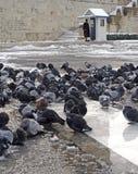 Greece bateu por tempestades da neve Imagem de Stock Royalty Free